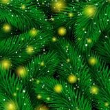 Fondo dei rami dell'albero di Natale Albero di abete di lusso magico Fotografia Stock Libera da Diritti