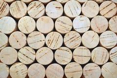 Fondo dei sugheri della quercia Immagine Stock Libera da Diritti