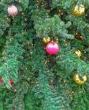 Fondo del árbol del Año Nuevo Foto de archivo libre de regalías