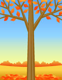 Fondo del árbol del otoño Imágenes de archivo libres de regalías