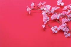 Fondo del Año Nuevo chino de la decoración del arreglo y del concepto del festival lunar Imagen de archivo