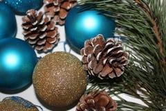 Fondo del Año Nuevo de una rama del pino Imágenes de archivo libres de regalías