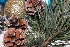 Fondo del Año Nuevo y de la Navidad con la rama del pino Imagen de archivo libre de regalías