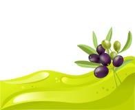 Fondo del aceite y de la rama de olivo de oliva Fotos de archivo