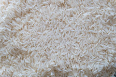 Fondo del arroz Foto de archivo libre de regalías