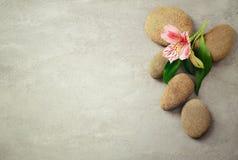 Fondo del balneario con las piedras Fotografía de archivo libre de regalías