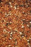 Fondo del Birdseed ancho foto de archivo libre de regalías