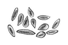 Fondo del blocchetto della matita e linee e raschiature approssimativi di astrazione Fondo crudo del sito Web della matita Strutt illustrazione vettoriale