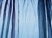 Fondo del blu della tenda del voile Immagini Stock