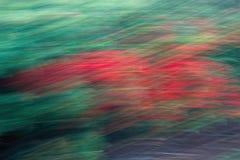 fondo del blurr Imagen de archivo libre de regalías