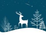 Fondo del bosque de la Navidad Fotografía de archivo libre de regalías