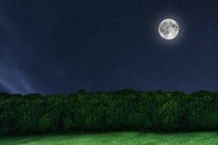 Fondo del bosque del cielo nocturno con la luna y las estrellas Luna Llena Fotografía de archivo libre de regalías
