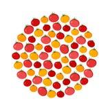 Fondo del círculo del vector del tomate Ejemplo del vector de los iconos del alimento biológico ilustración del vector