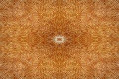 Fondo del caleidoscopio de la piel del gato Fotos de archivo