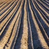 Fondo del campo arato Fotografia Stock