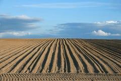 Fondo del campo di agricoltura dell'aratro Fotografia Stock
