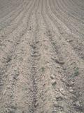 Fondo del campo recentemente arato pronto per i nuovi raccolti - annata e Fotografie Stock Libere da Diritti