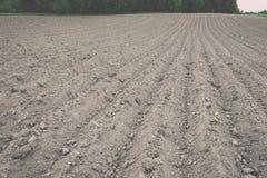 Fondo del campo recentemente arato pronto per i nuovi raccolti - annata e Immagini Stock Libere da Diritti