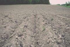 Fondo del campo recentemente arato pronto per i nuovi raccolti - annata e Fotografia Stock Libera da Diritti