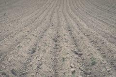 Fondo del campo recentemente arato pronto per i nuovi raccolti - annata e Fotografie Stock