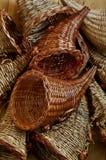 Fondo del canestro della cornucopia Fotografia Stock Libera da Diritti