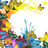 Fondo del chapoteo de la mariposa y de la acuarela Imagen de archivo libre de regalías