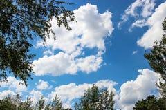 Fondo del cielo azul y de algunas nubes en el marco del abedul Imagen de archivo libre de regalías