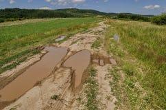 Fondo del cielo, delle nuvole, del campo, della strada con la pozza dopo la pioggia dell'inondazione e della foresta Fotografie Stock