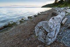 Fondo del cielo del paisaje de Ocean Pacific de la playa Foto de archivo libre de regalías