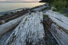 Fondo del cielo del paisaje de Ocean Pacific de la playa Imagen de archivo libre de regalías