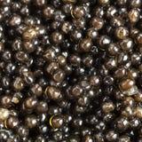 Fondo del cierre negro del caviar del esturión para arriba Foto de archivo libre de regalías