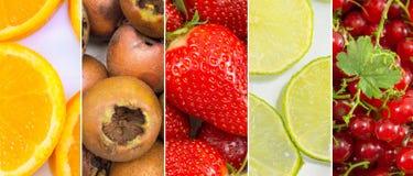 Fondo del collage della frutta fresca Fotografia Stock
