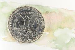 Fondo del color de agua del dólar de plata de Morgan Imagen de archivo libre de regalías