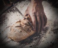 Fondo del concepto de la panadería Manos que cortan rebanadas del pan del pan Imágenes de archivo libres de regalías