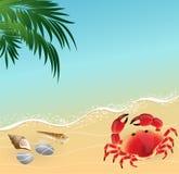 Fondo del concepto de las vacaciones de la playa del verano Imágenes de archivo libres de regalías