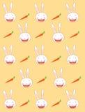 Fondo del conejo Imágenes de archivo libres de regalías