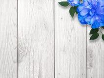 Fondo del confine del fiore blu e bianco Immagine Stock