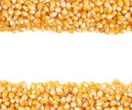 Fondo del corazón de maíz de Copyspace Imágenes de archivo libres de regalías