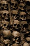 Fondo del cráneo Foto de archivo libre de regalías