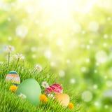 Fondo del día de fiesta de la naturaleza de Pascua Imagen de archivo