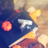 Fondo del día de fiesta de Halloween con la calabaza y el caramelo Visión desde arriba Imagen de archivo libre de regalías
