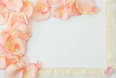 Fondo del día de tarjeta del día de San Valentín Fondo blanco con suavemente la rosa del rosa Imagen de archivo