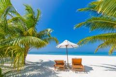 Fondo del destino del viaje del verano Escena de la playa del verano, paraguas de sol de las camas del sol y palmeras foto de archivo