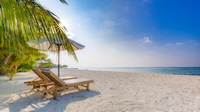 Fondo del destino del viaje del verano Escena de la playa del verano, paraguas de sol de las camas del sol y palmeras fotografía de archivo