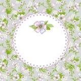Fondo del diseño floral?, contexto, diseño de la ilustración Imagen de archivo