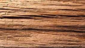 Fondo del Driftwood Imagen de archivo libre de regalías