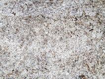 Fondo del espacio con la pintura blanca Foto de archivo
