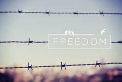 Fondo del filo spinato di concetto di citazione di libertà Immagine Stock