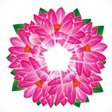Fondo del fiore della ninfea royalty illustrazione gratis