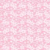 Fondo del flor de cereza Fotos de archivo libres de regalías